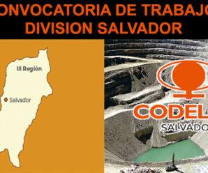 DIVISION SALVADOR CONVOCATORIA DE TRABAJO